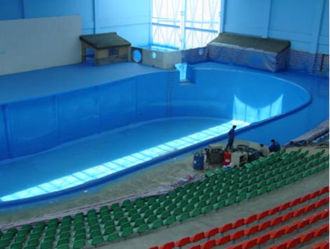 聚脲设备河南地区泳池防腐防水施工案例